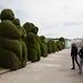 Topiarys of Tulcan