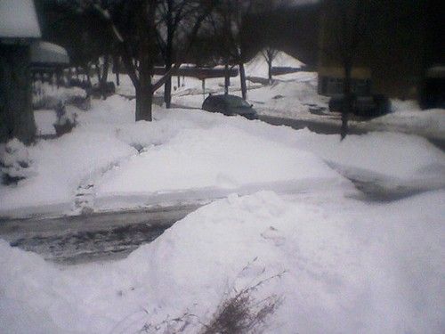 The view from our front door, 2/23/11
