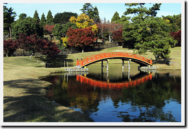 20101116_142002_旧大乗寺庭園