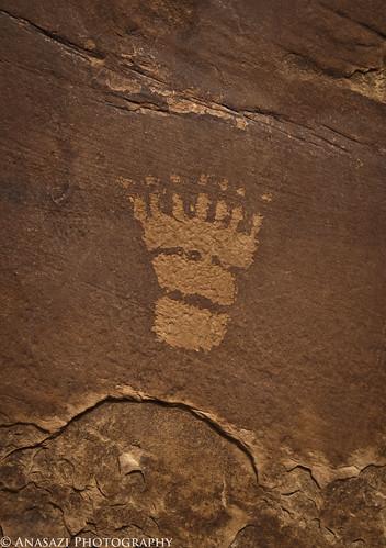 Seven Toes