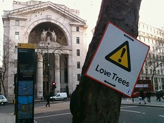 Attention: Love Trees