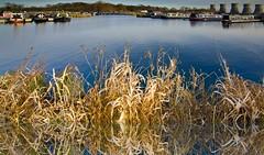 Mercia Reflections (pickup2sticks 12.2 million views.) Tags: marina reflections nikon derbyshire grasses narrowboat waterways waterscape willington mercia dcpc d7000 gjkerr