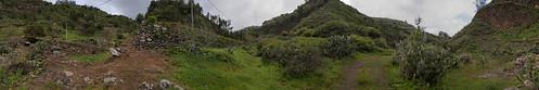 Barranco del Laurel, Moya. Isla de Gran Canaria