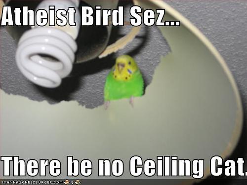 atheistbird