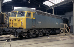 56025 Barrow Hill 17.5.86 (D9006) Tags: railways britishrail barrowhill class56 1000000trainsineurope