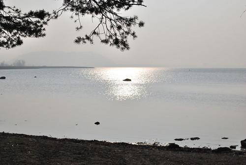 L'île de Saint-Pierre