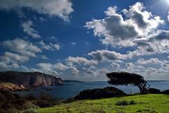 La Costa del Silenzio (Tati@) Tags: sardegna day cloudy natura paesaggio scogliera silenzio mediocampidano capopecora magicunicornverybest elitegalleryaoi mygearandme mygearandmepremium mygearandmebronze mygearandmesilver mygearandmegold mygearandmeplatinum mygearandmediamond