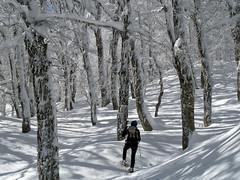 Scialpinismo Laga - Monte di Mezzo da Frattoli