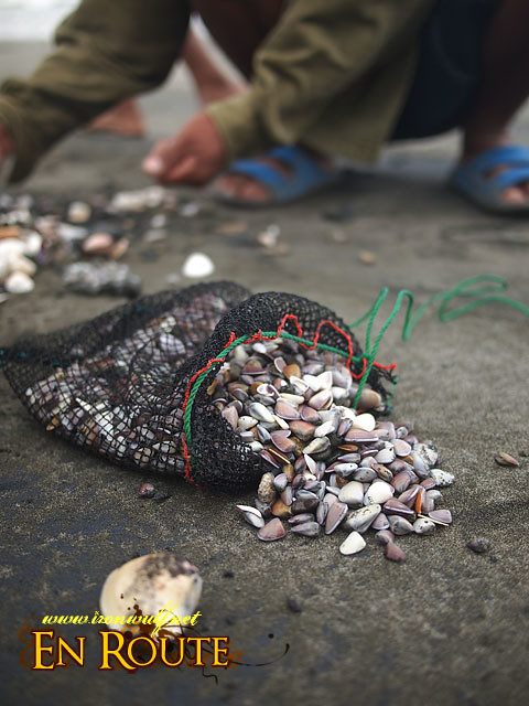 The caribaryo shells are put into this net pouch