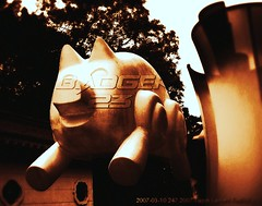2007-03-10 247 2007 Taipei Lantern Festival REDO (Badger 23 / jezevec) Tags: festival lights pig colorful taiwan parade taipei formosa  float  hai taipeh boar kina  lanternfestival loan  chineselantern  chiangkaishekmemorialhall jezevec   republicofchina yearofthepig       republikken taiwn chaingkaishek  tajwan  tchajwan  i     tapeh    badger23 shangyuanfestival  republikchina thivn