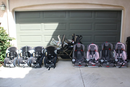 Graco Collection