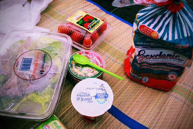 picnic siol~