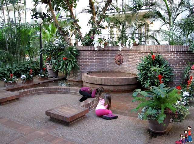 Garden Fountain at Gaylord Opryland