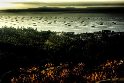 Bateas at sunset. O Grove. Galicia. Bateas atardecer