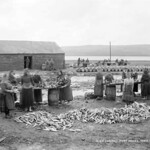 Portmagee Fish Curing, Co.Kerry