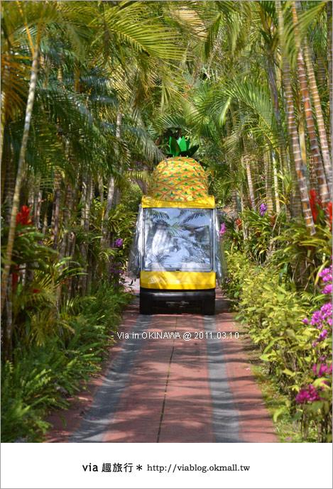 【沖繩自由行】Via帶你玩沖繩~來趟浪漫的初春沖繩旅〈行程篇〉44