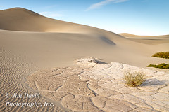 Mesquite Sand Dunes (jim_david) Tags: america bush california climate deathvalleynationalpark desert drought environment isolation mesquitesanddunes mountain orange park plant sand stock summer valley arid brown conservation desolate dry extreme geology hot landscape outdoors preservation protect remote ridge stone struggle survival texture tourism travel vacation warm weather west western wild wilderness