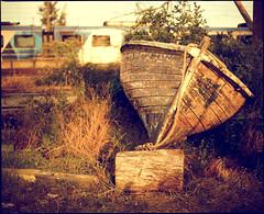 In transit (RagtimeWillie) Tags: wood colour abandoned mamiya film grass train vintage fence mediumformat boat rope retro nostalgia rowingboat williamswishwellingtons