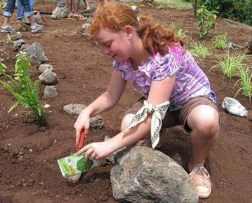 Paige McArthur of Mililani, Hawaii, plants broccoli as part of Hawaii's Sea Life Park's Rescue Program. The coastal garden they planted will grow broccoli, lettuce and native plants to supplement the diets of endangered sea turtles in the rescue program. The new garden, situated between the mountains and the sea -- or mauka to makai -- also serves as a living classroom where students see the connection between healthy forests and clean water.