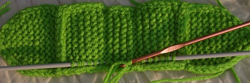 Green size 8 needles doubled WW RHSS Body top showing pu st from inside I cord on ws body and crochet hook picking up st
