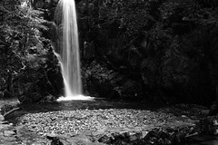 The Fall -Tuzumi ga taki- (Arima, Kobe, Japan) (t-mizo) Tags: bw fall monochrome japan blackwhite sigma kobe rokko 日本 onsen hotspring hyogo arima rokkosan merrill foveon 神戸 滝 六甲山 モノクロ 白黒 mountrokko dp2 兵庫 spp arimaonsen 有馬 有馬温泉 rokkou rokkousan sigmaphotopro 鼓ヶ滝 dp2m dp2merrill tudumigataki