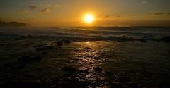 Water's Landing (rosiebondi) Tags: ocean sunrise sydney australia