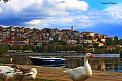 Geese's in the city (RaphaelKargos) Tags: kastoria westernmacedonia geese boat water lake city clouds efs 1855mm macedoniagreece makedonia timeless macedonian