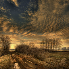 Winter  in my land (rinogas) Tags: morning winter italy clouds sunrise nikon piemonte cuneo nikkor1224dx sommarivadelbosco vertorama rinogas
