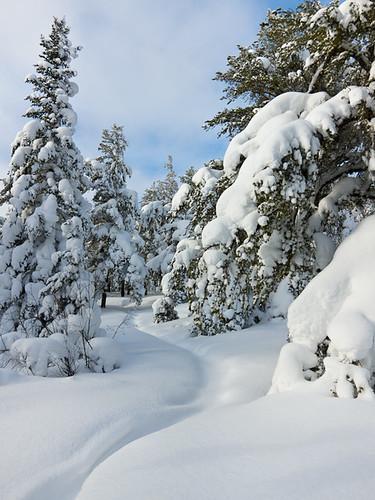 Eagle Mountain Trail