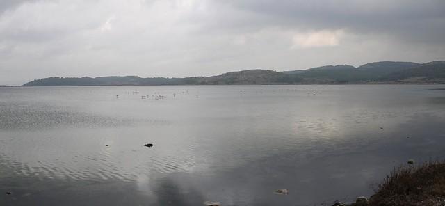 Gruissan étang