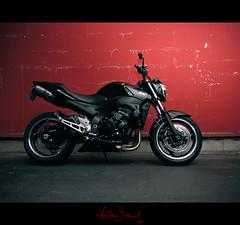 My GSR (Antonin Douard) Tags: black bike motorbike jorge lorenzo r 600 moto motorcycle yamaha suzuki motogp k8 2008 rossi gsx hamamatsu gp valentino gsxr superbike sbk gsr gsv