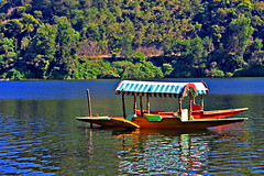 Shikara Boat at the Kundala Lake, Munnar (luckydesi) Tags: lake boat munnar shikara kundala