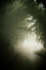Sapa (Thomas Cristofoletti's stock photography) Tags: fog trekking vietnam sapa asiasociety canon5dmarkii