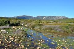 Entre la tour d'Ulmetu et Saparella : maquis hivernal et zones inondées