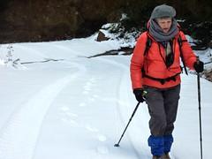 Piste forestière du San Petru : il ne manque plus que les skis !