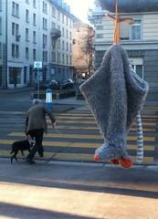 echos of a city - city bat (pixelspin) Tags: strasse zurich hund zrich fledermaus mensch