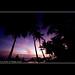 Dusk on the beach - Osa peninsula - Costa Rica