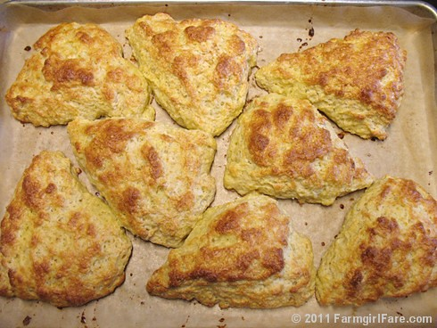 Meyer Lemon Scones 5