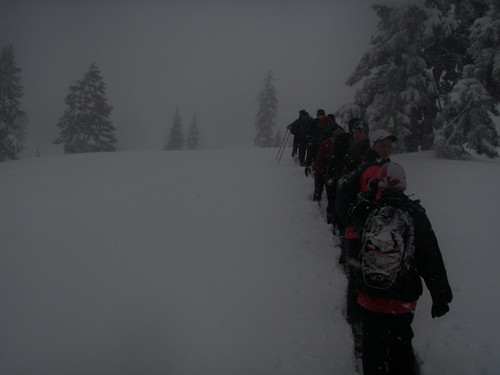 Squamish Scrambler - Participants in the Snowshoe Run and Hike Ascending to Paul Ridge