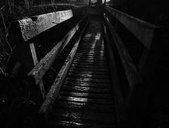 Dark secrets. (dahowes) Tags: wood bw sunlight sunrise wooden shadows footbridge derbyshire footpath spondon d80 18135mm dahowes