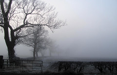 The Thieving Fog I by Snailrind, on Flickr