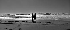 Zahora Beach (meer cottage) Tags: sea bw dog men beach spain sand surf waves trafalgar andalucia zahora