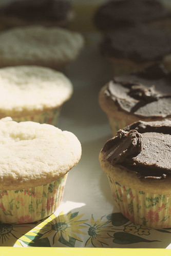 cupcake rows