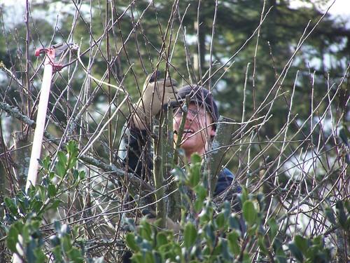 jfeb 062 Lucas in the apple tree