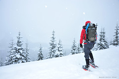 Out and Back (mj.foto) Tags: landscape washington nikon unitedstates snowstorm alpine backcountry snowshoeing hyak snoqualmiepass d700 markjosue