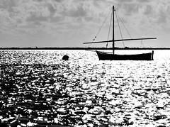 oggi (viaggiaresiii) Tags: light sea sky bw barca nuvole mare bn cielo riflessi luce fili onde isola oggi onda scogli riflesso orizzonte barcaavela pennone tagviaggia
