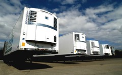 Commercial trailors in a row fitted with Thermo King refrigeration units by Marshall Fleet Solutions