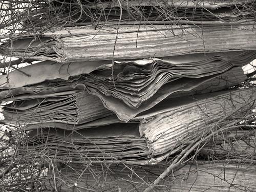 Bücher by Fotosilber
