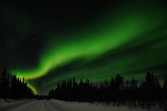 Aurora borealis (totheforest) Tags: nightphotography winter snow cold night forest kyla vinter sweden aurora skog sn northernlights auroraborealis nattbilder norrsken norrbotten winterroad supershot kallt skogsvg nikond90 top20aurora nikonflickraward junosuando 100commentgroup saariysqualitypictures nikkorafsdx18105mmf3556gedvr kurkkio coppercloudsilvernsun mygearandme mygearandmepremium mygearandmebronze mygearandmesilver mygearandmegold mygearandmeplatinum mygearandmediamond