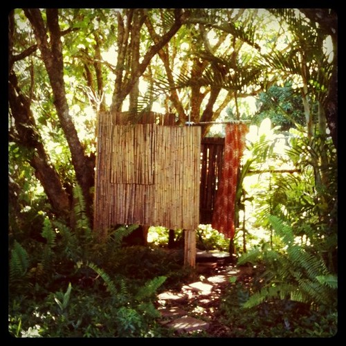 our hawaiian jungle shack has a shower